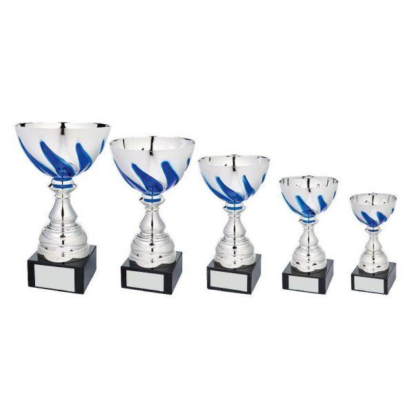 Silver/Blue Bowl Award on Black Marble