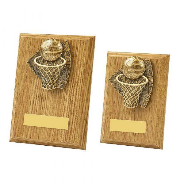 Light Oak Netball Wood Plaque Award