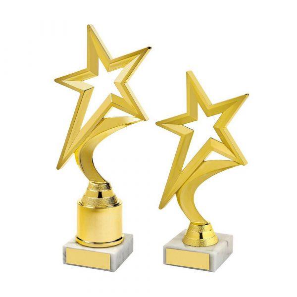 Gold Shooting Star Holder Award