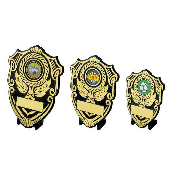 Black and Gold Budget Plastic Shield Award