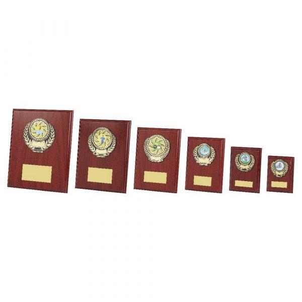 Wood Plaque Award