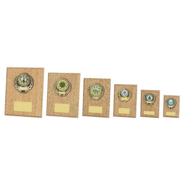 Light Wood Plaque Award