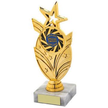 Gold Star Holder Award