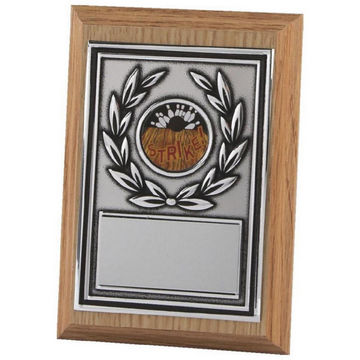 Lightwood Shields with Antique Silver Metal Fronts