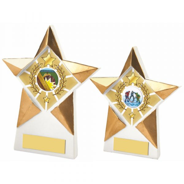 Gold/White Star Resin Trophy