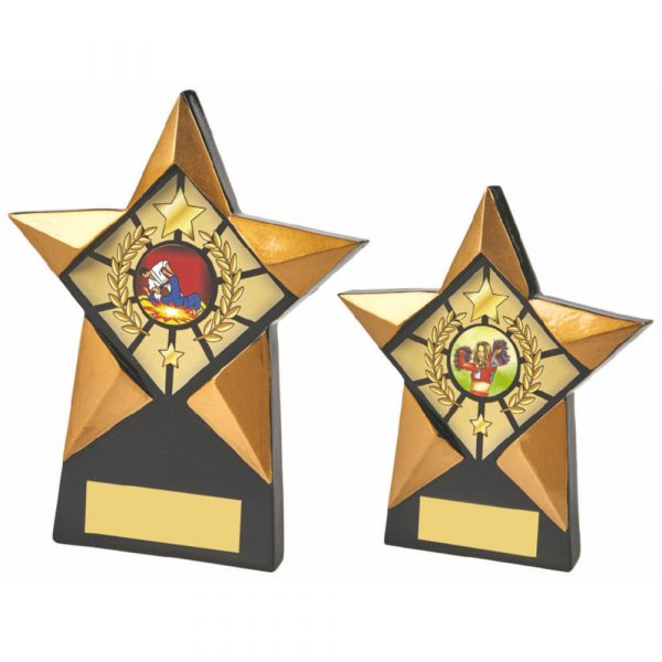 Gold/Black Star Resin Award
