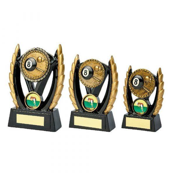 Black & Gold Resin Pool Award