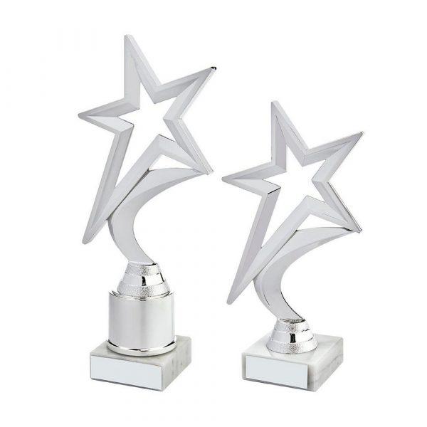 Silver Shooting Star Holder Award