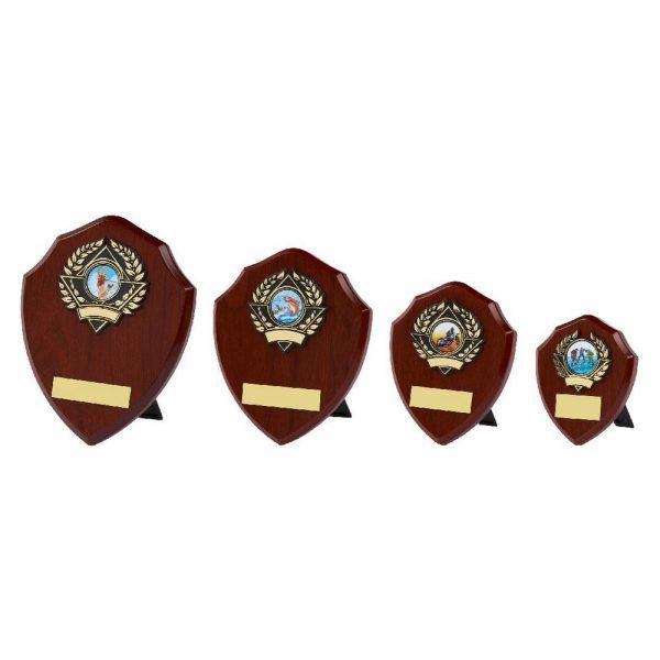 Traditional Shield Award