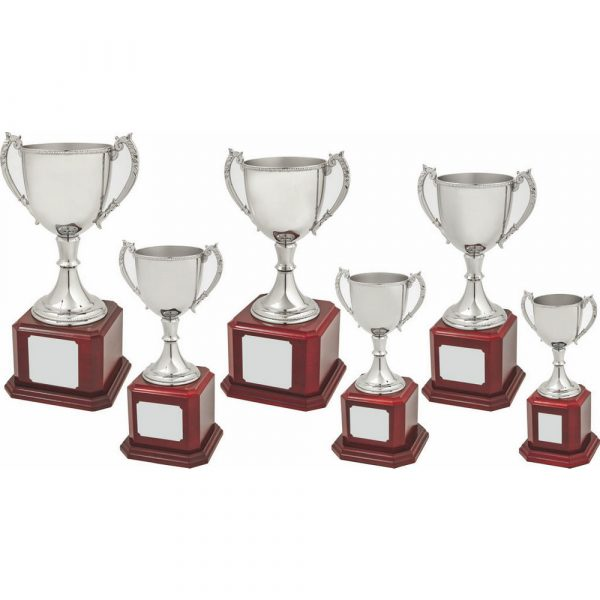 Nickel Plated Trophy Cup on Wood Base