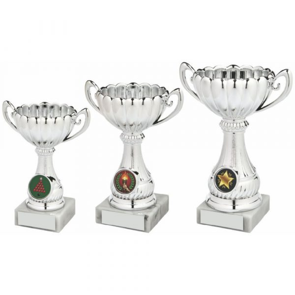 Plastic Silver Bowl Award