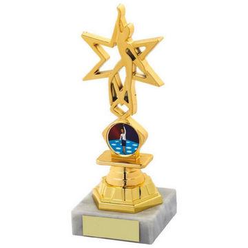 Gold Star Dance Award