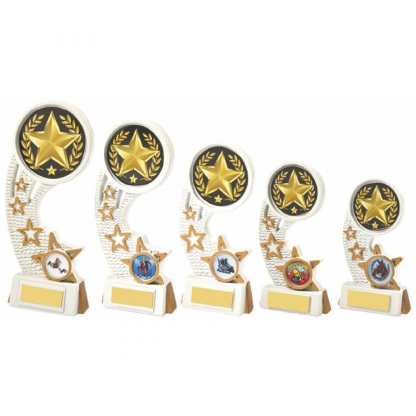 White/Gold Star Resin Award
