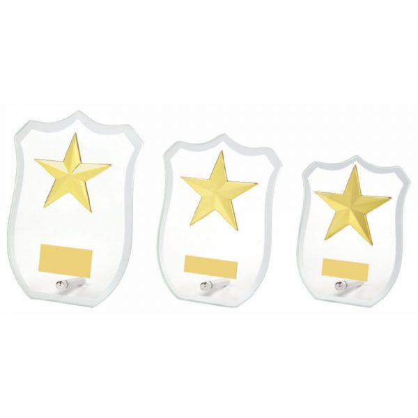 Glass Shield Award with Star Trim